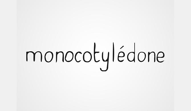 les belles gueules opticien bordeaux X monocotyledone creatrice bordeaux
